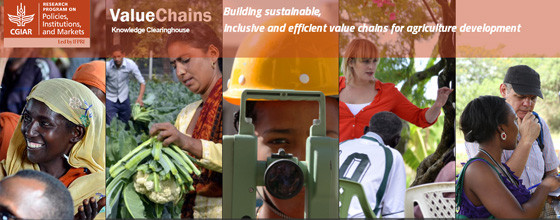 Value_Chains_New_Website_SLtn