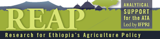 link to Research for Ethiopia's Agriculture Policy (REAP) website