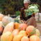 Woman selling vegetables at roadside market in Ethiopia